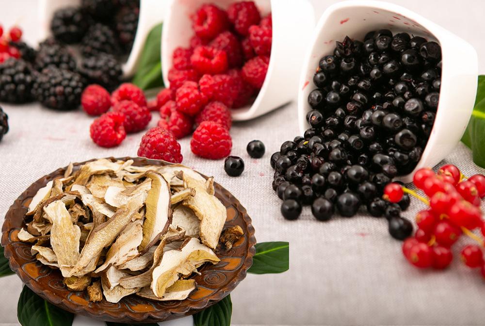 Prelucrarea ciupercilor si fructelor de padure
